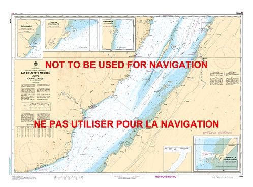 RNC1234 - Cap de la Tête au Chien au/to Cap aux Oies