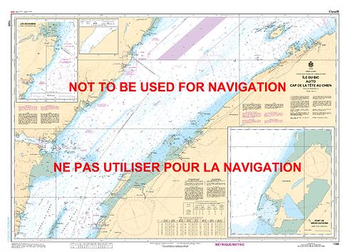 RNC1320 - Île du Bic au/to Cap de la Tête au Chien