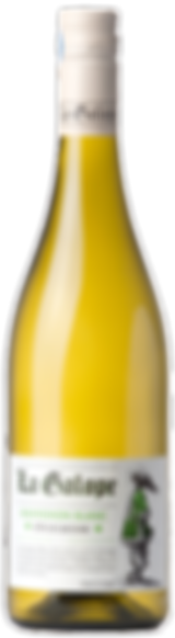 Bottle_Galope_Sauvignon-WEB.png