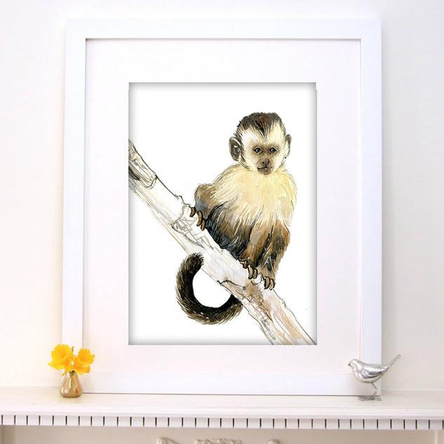 baby monkey2.jpg