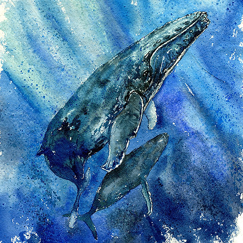 """Deep Waters"" Humpback Whales"