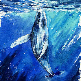 """The Way"" Humpback Whale"