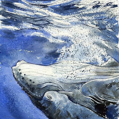 """""""Ingenuity"""" Humpback Whale"""