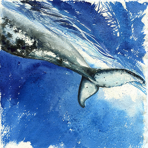 """""""Strength"""" Humpback Whale Tail"""