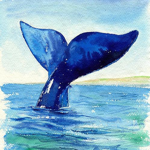 """""""Aloha"""" Humpback Whale Tail"""