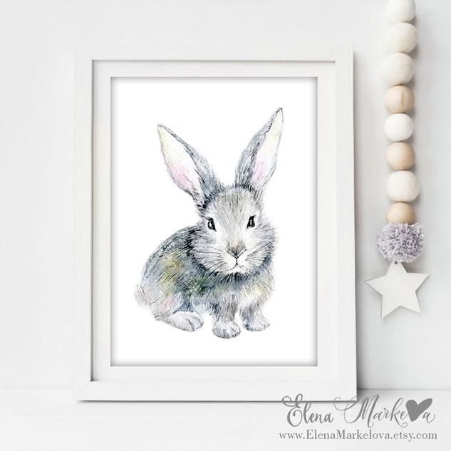 baby bunny.jpg