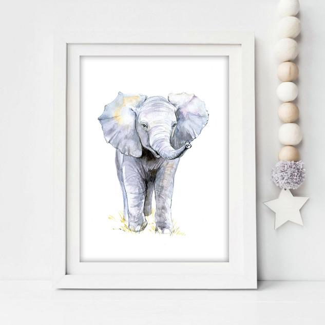 baby elephant2.jpg
