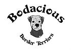 Bodacious.png