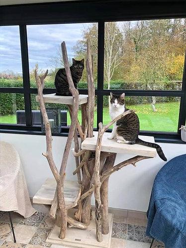 Arbre à chats 3 plateaux dont un 1 grand