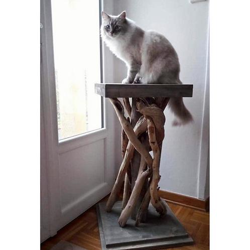 Arbre à chats 1 plateau / Reposoir