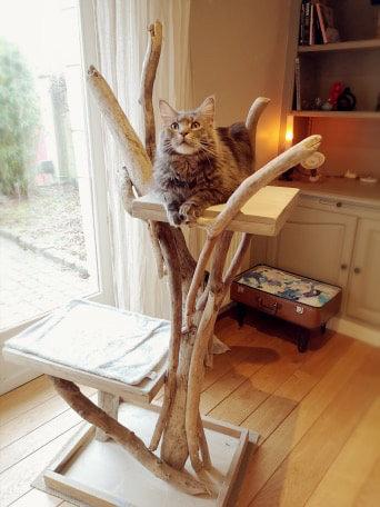 Arbre à chats 2 plateaux dont un grand