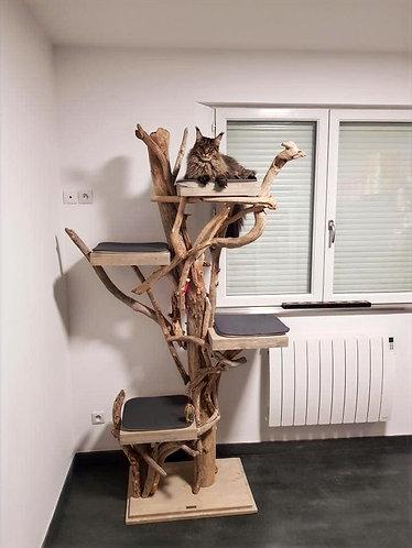 Arbre à chats 4 plateaux