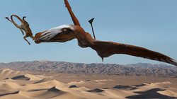 A New Species of Triassic Pterosaur