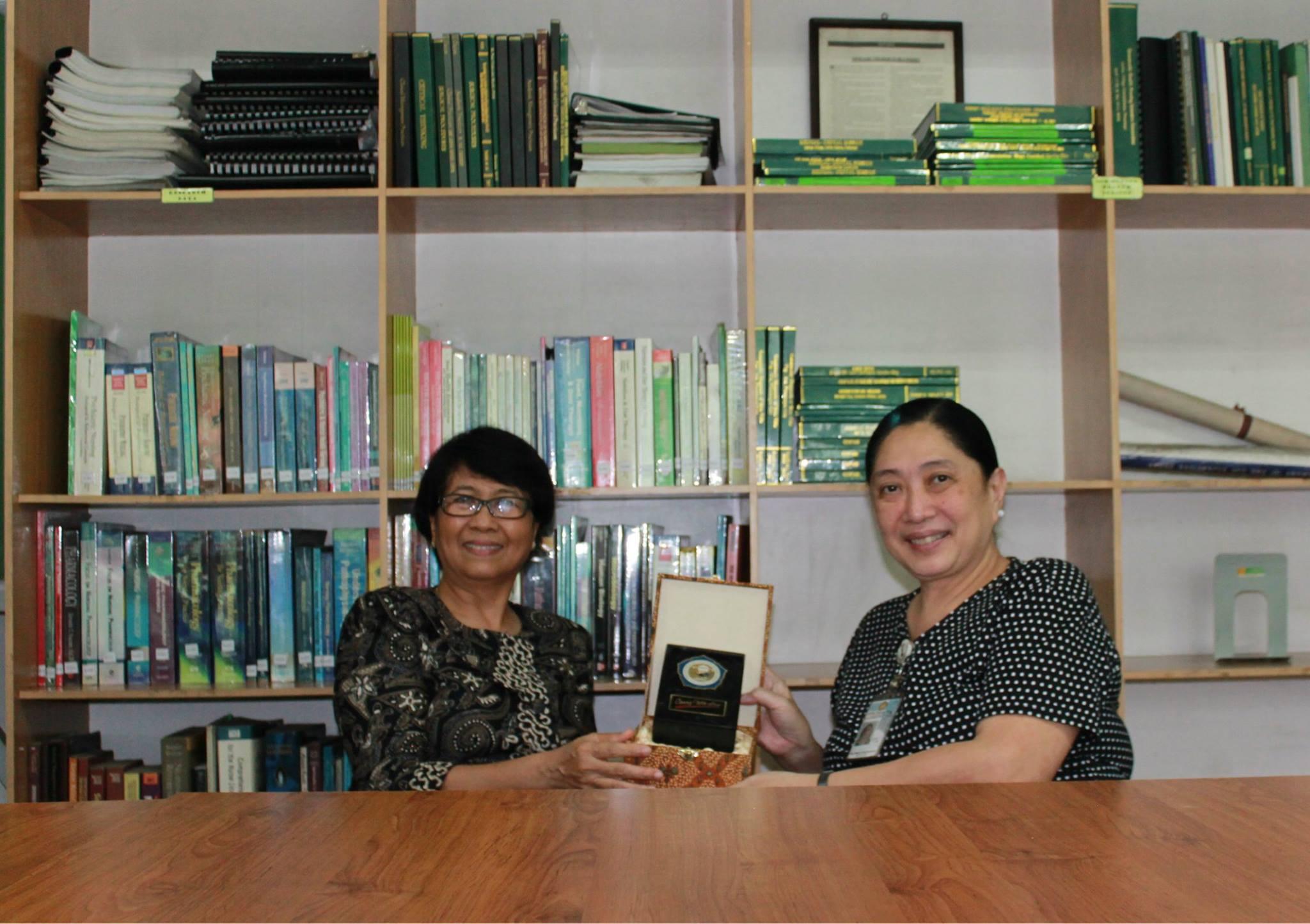 Dr. Ma. Irma Bustamante, PhD, RN