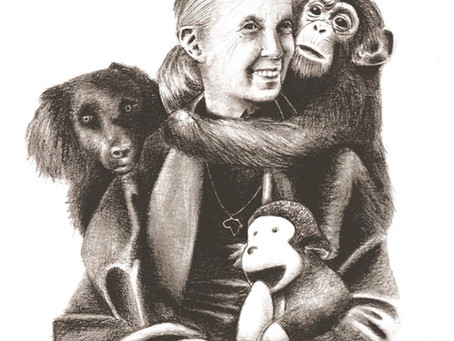 """Los grupos """"Raíces & Brotes"""" felicitan a la Dra. Jane Goodall en su 85 cumpleaños."""