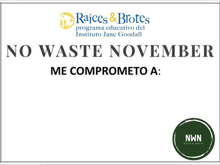 "¡Nos sumamos a la campaña ""No Waste November""!"