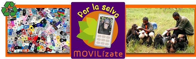 movilizate (2).jpg