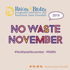 No Waste November 2019