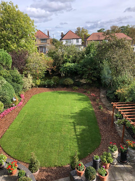 Newly laid lawn for client