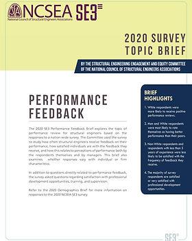 2020 SE3 Survey - Performance Feedback T