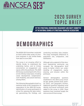 Demographics Topic Brief - thumbnail.jpg