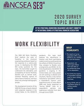 2020 Work Flexibility - thumbnail Page 0