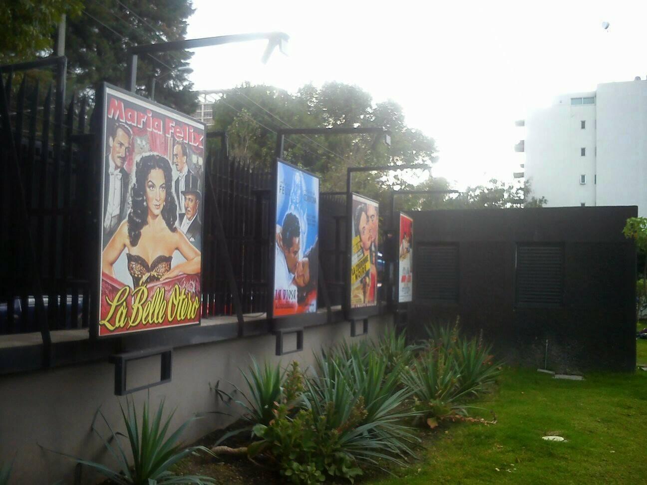 carteles promocionales de vinilo