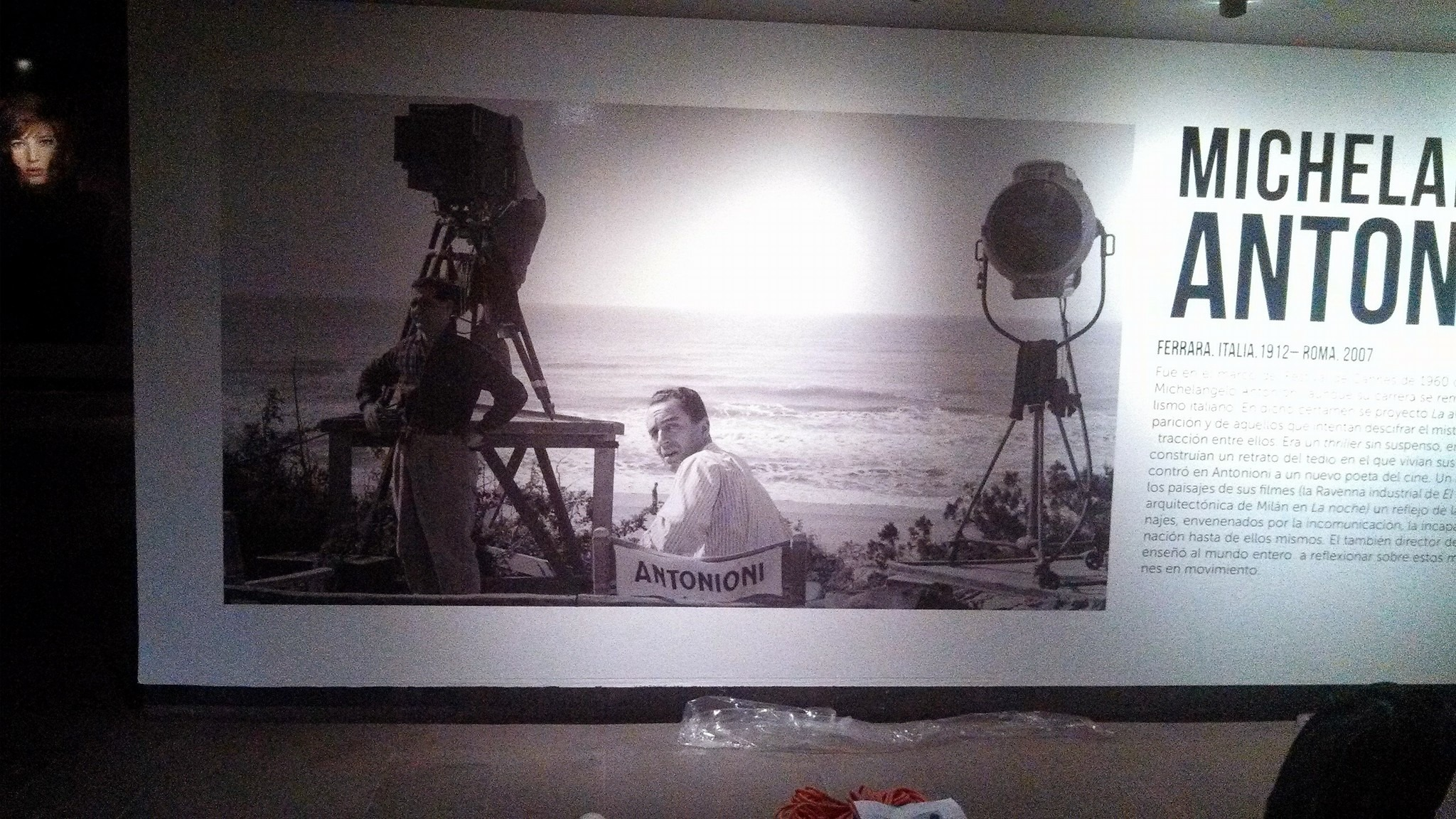Vinilo_para_muro_galería_cineteca