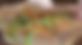 スクリーンショット-2020-07-07-0.05.53.png