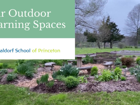 Our Outdoor Learning Spaces