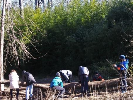 7th/8th Grade Gardening: Firewood Fundraiser