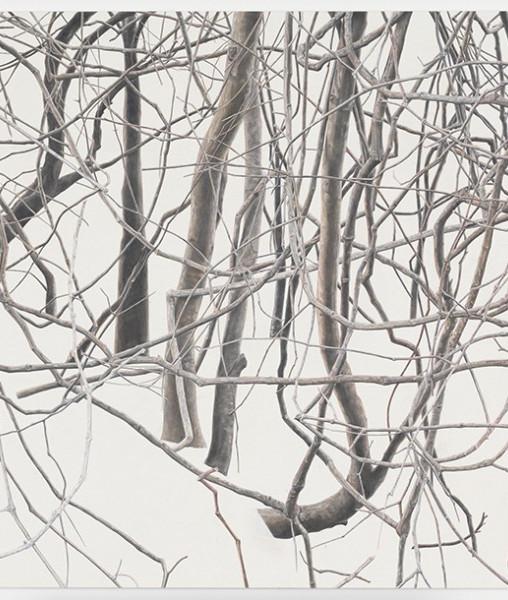CHAMBRE ART: Toba Khedoori