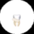 teeth-cd-1.png
