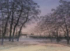 kashihara-PP.jpg