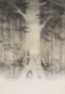 himorogi-PP.jpg