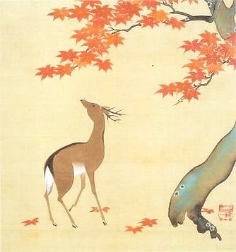 hoitsu-momiji-shika.jpg