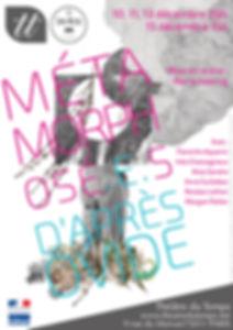 Affiche_métas_-_v11_sans_fonds_perdus-pa