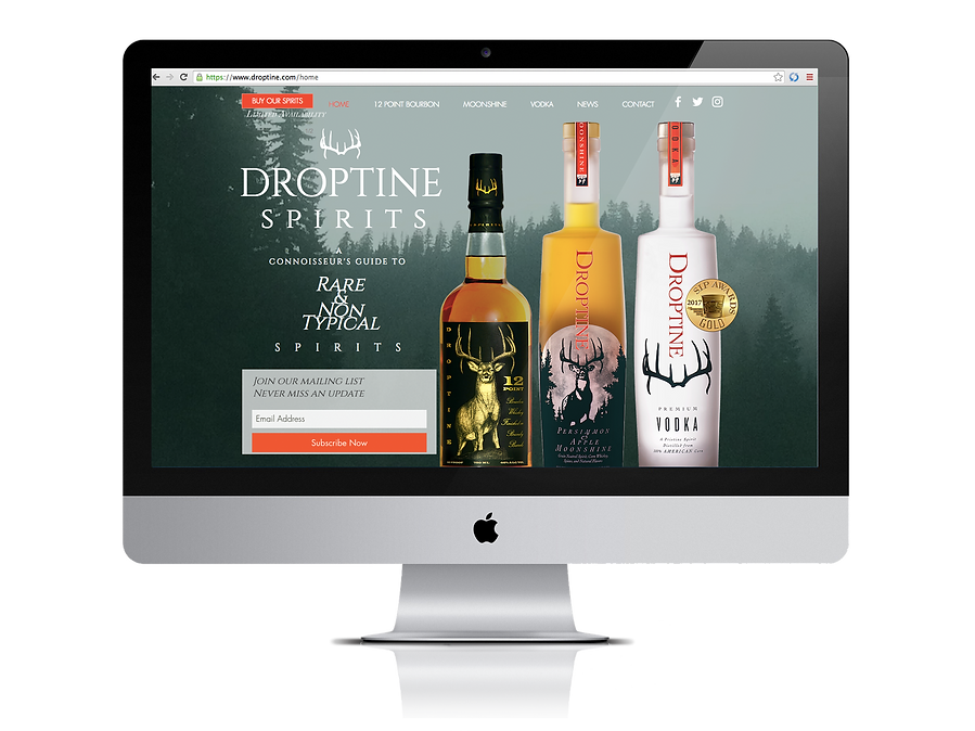 Droptine on Computer Screen.png