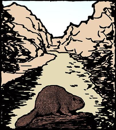 Beaver Kill & Beaver Wood cut.jpg