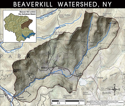 Beaverkill Watershed Map.jpg