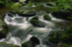 Beaverkill CU.jpg