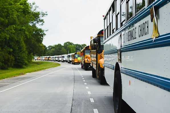 Bus Parade LT 19.jpg