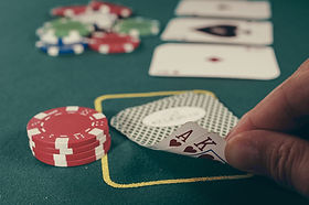 Potential Impacts of a Proposed Gambling Casino and Entertainment Complex