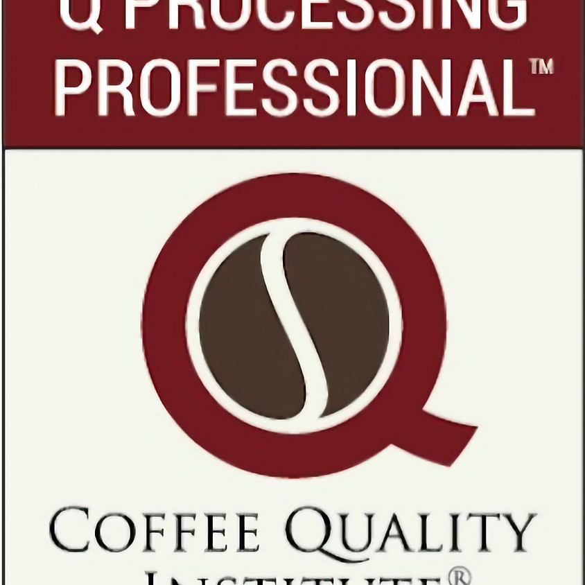 THE CQI - Quality Processing Professional - Level 2