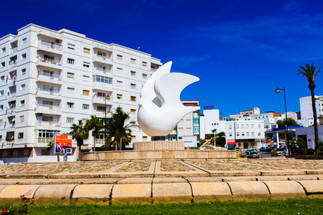 "Tetouan The City of the White Dove"" الحمامة البيضاء"