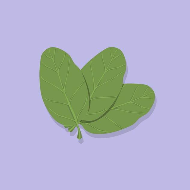 SPINACH copy-01.png