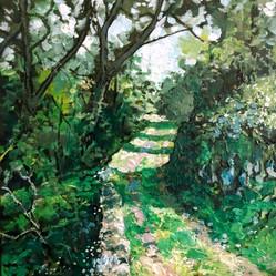 Psilithrais path in Spring.jpg