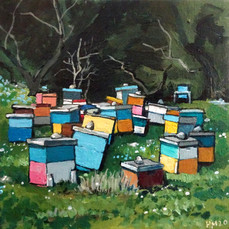 Bee Hives March 2020.jpg