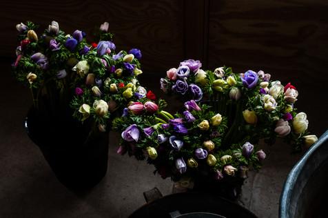 Champernhayes Flowers