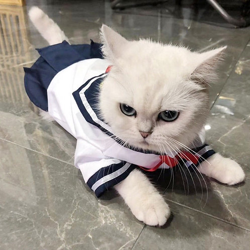 寵物衣服 水手服(貓狗適用)